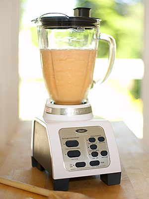 Quick idea make your own fish emulsion the arid land for Fish in a blender